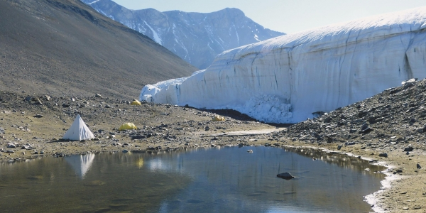 Climate-Change Studies in Antarctica Are Crucial, if Not Straightforward 1