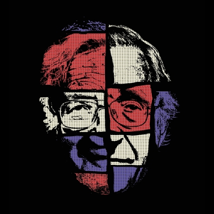 The Chomsky Puzzle: Piecing Together a Celebrity Scientist