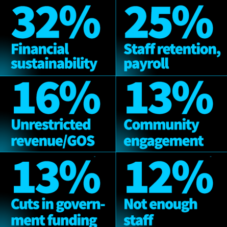 """Nonprofit System Is """"Chronically Brittle,"""" Survey Results Suggests"""