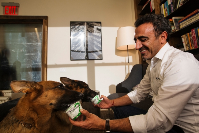 Chobani Inc. founder Hamdi Ulukaya poses for a portrait with his German Shepherd dogs in the company headquarters in New York, December 13, 2012.